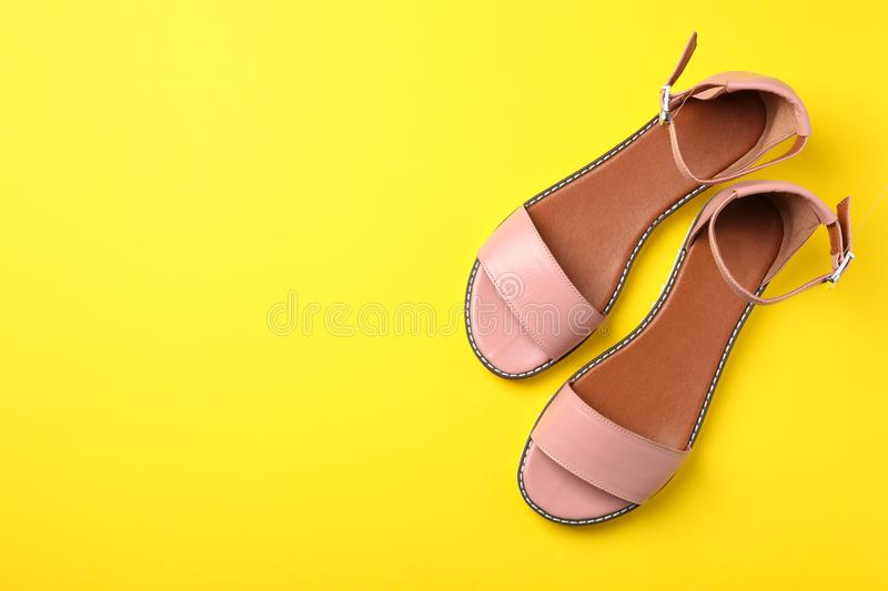 Pair of trendy women`s shoes royalty free stock photo