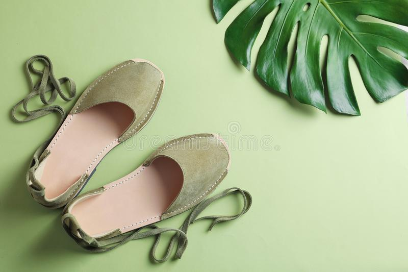 Pair of trendy women`s shoes and tropical leaf. On color background royalty free stock images