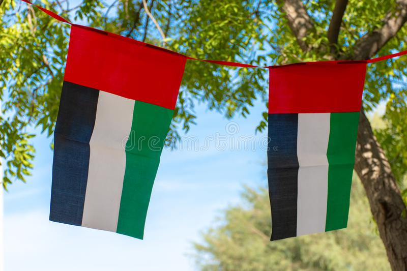 Pair of UAE Flags with Blue Sky Background. And trees royalty free stock images