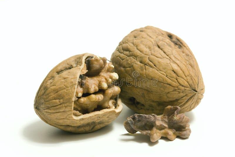Pair of walnut