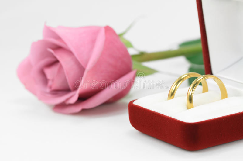 Download Pair of wedding rings stock photo. Image of leaf, event - 28666220