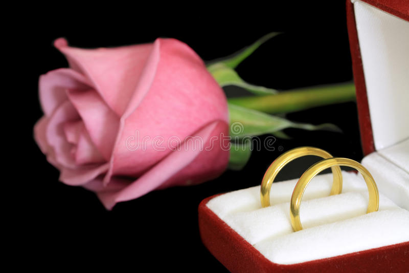 Download Pair of wedding rings stock photo. Image of relationship - 28666456