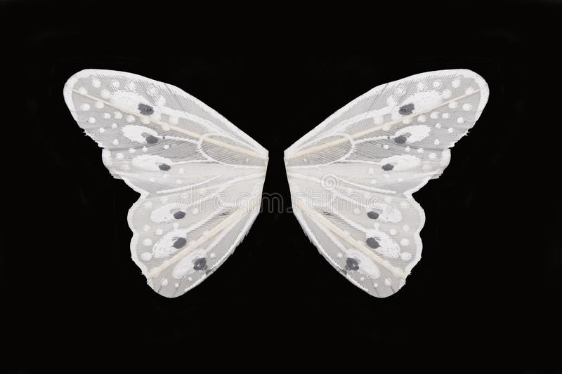 Pair of white butterfly wings on black background royalty free stock photo