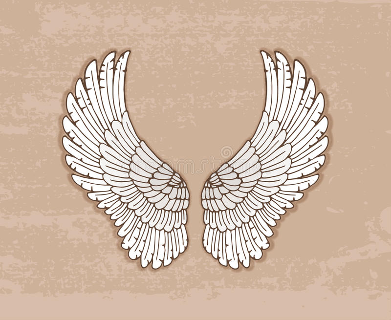 Pair of white wings in vintage style vector illustration