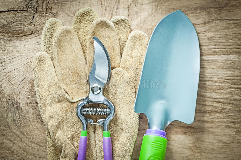 Pair of working gloves secateurs hand spade on wooden board agri. Culture concept stock images