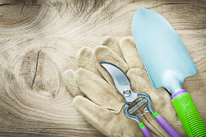 Pair of working gloves secateurs shovel on wooden board agricult. Ure concept stock photos