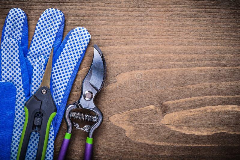Pair of working gloves sharp garden shears pruner gardening conc. Ept stock photos