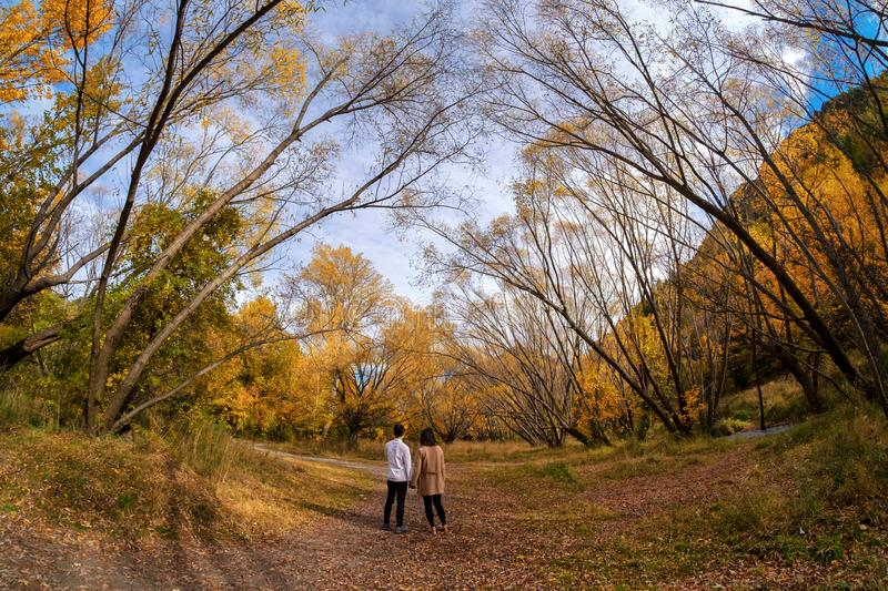 A pair of young couple walking down a track surrounded with beautiful autumn trees royalty free stock photo