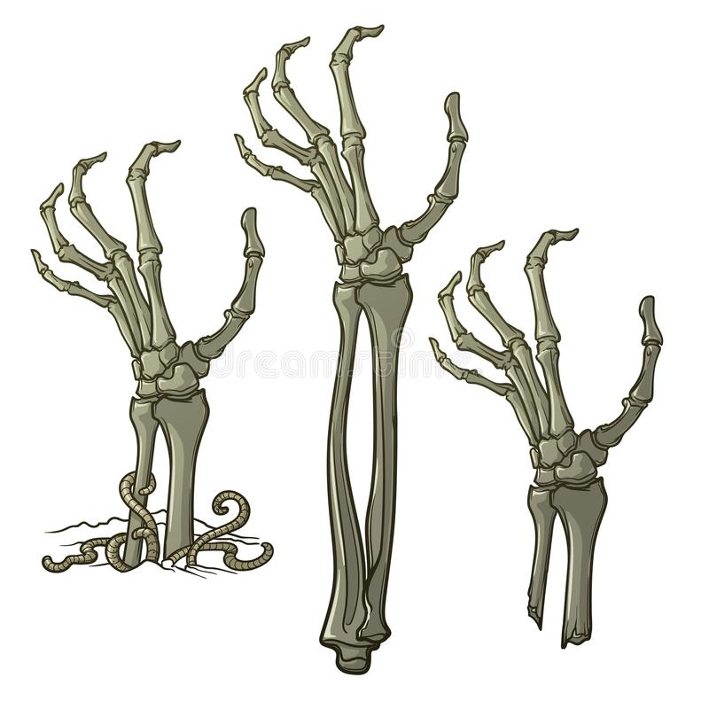 Pair of zombie hands rising from the ground and torn apart. Lifelike depiction of the rotting flash with ragged skin, protruding bones and cracked nails stock illustration