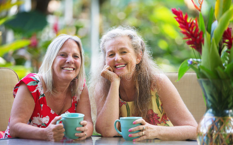 Paires d'amis heureux photo libre de droits