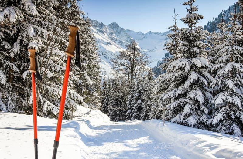 Paires d'augmenter des bâtons dans la neige Activité sportive dans le paysage et la forêt d'hiver de montagnes photographie stock libre de droits