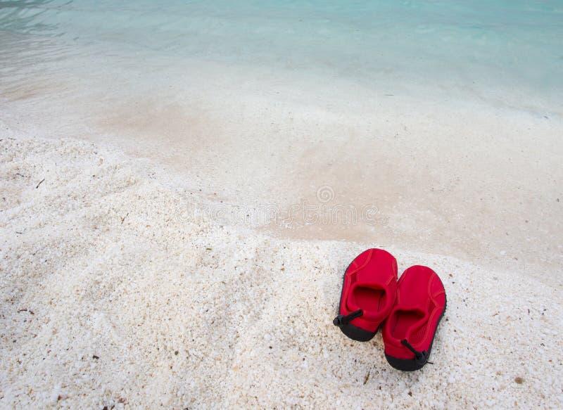 Paires de chaussures de natation sur la côte photo stock