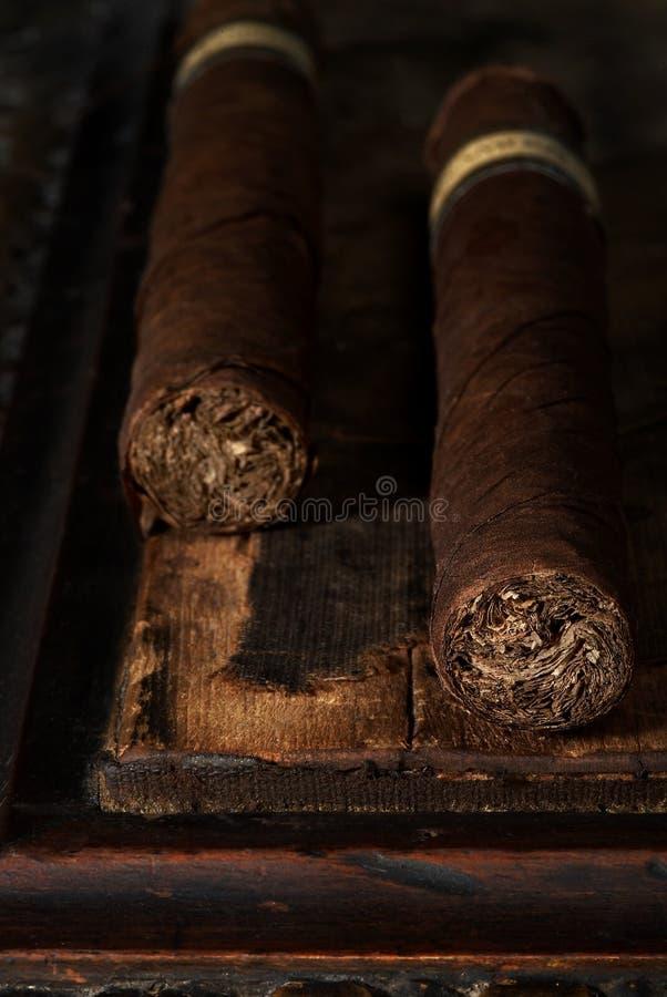 Paires de cigares photo libre de droits