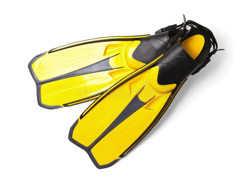 Paires de nageoires jaunes sur le fond blanc images libres de droits