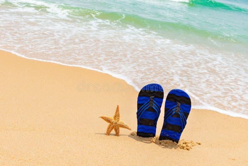 Paires de pantoufles et d'une étoile de mer devant une plage avec la vague image libre de droits