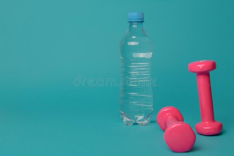 Paires de rose haltères de 1 kilogramme sur le fond bleu image stock