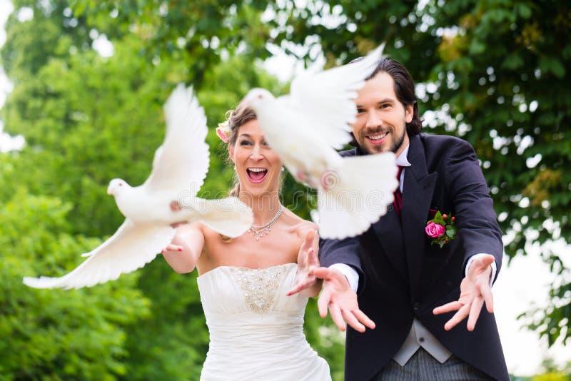 Paires nuptiales avec les colombes blanches volantes au mariage images stock