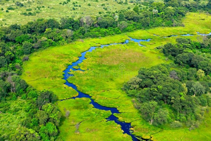 Paisagem aérea no delta de Okavango, Botswana Lagos e rios, vista do avião Vegetação verde em África do Sul Árvores com w imagem de stock