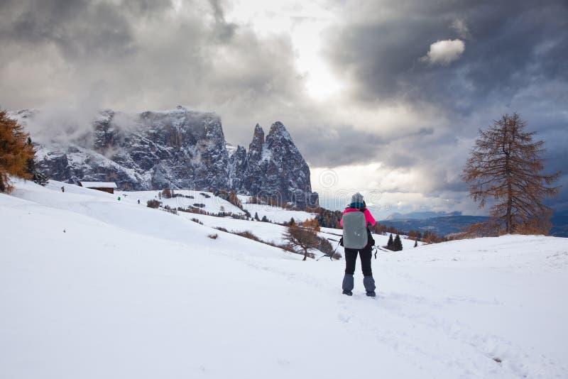 paisagem adiantada nevado do inverno em Alpe di Siusi Dolomites, Itália - destino dos feriados de inverno imagem de stock