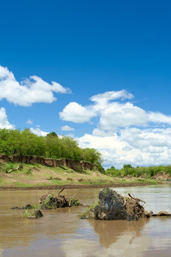 Paisagem africana bonita. Masai Mara, Kenya imagem de stock royalty free