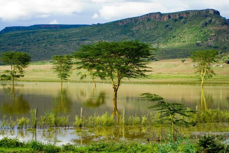 Paisagem africana com reflexão foto de stock royalty free