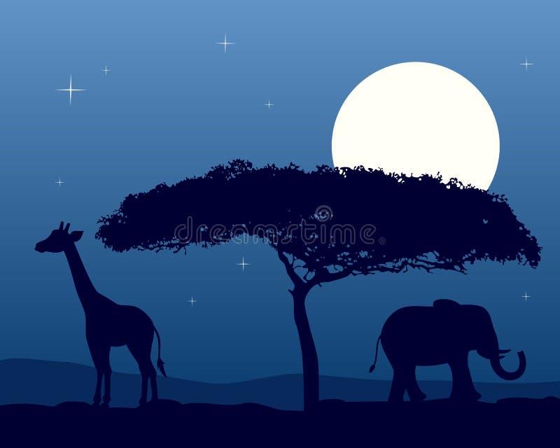 Paisagem africana na noite ilustração do vetor