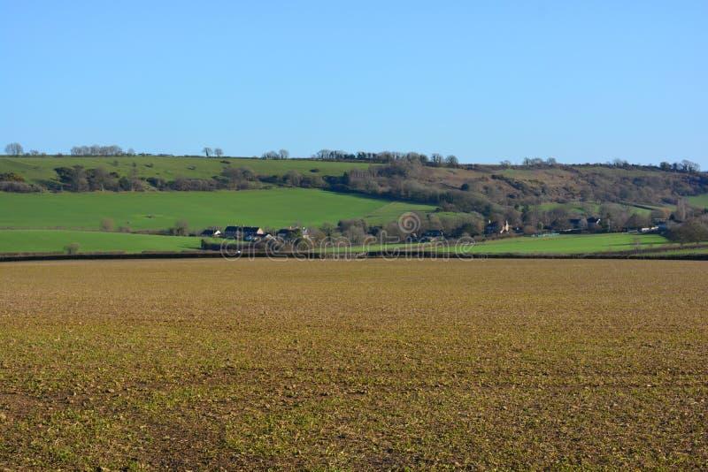 Paisagem agrícola no inverno em um dia claro, ensolarado fotos de stock