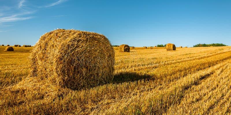 Paisagem agricultural do verão Um pacote da palha saiu no primeiro plano no campo após a colheita sob um céu azul bonito fotos de stock royalty free