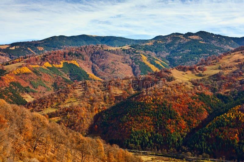 Download Paisagem alpina colorida imagem de stock. Imagem de montes - 16865243