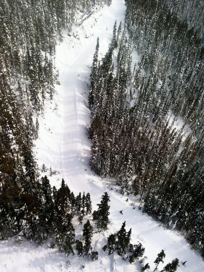 Paisagem alpina em montanhas de Blackcomb do assobiador foto de stock
