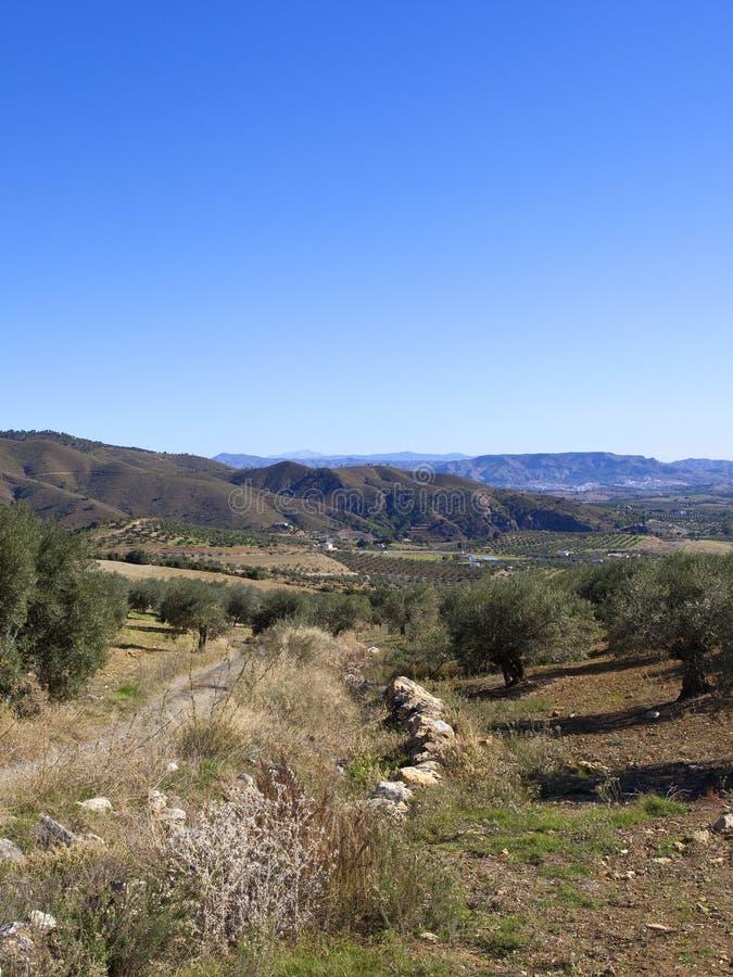 Download Paisagem Andaluza Seca Com Montanhas Foto de Stock - Imagem de estrada, andalusian: 107528848