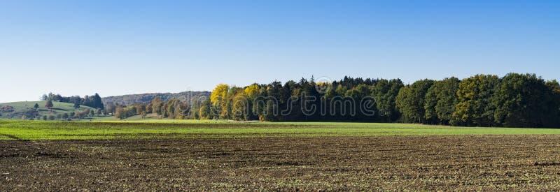 Paisagem ao longo da estrada romântica, Buchdorf, Alemanha Panorama fotos de stock royalty free
