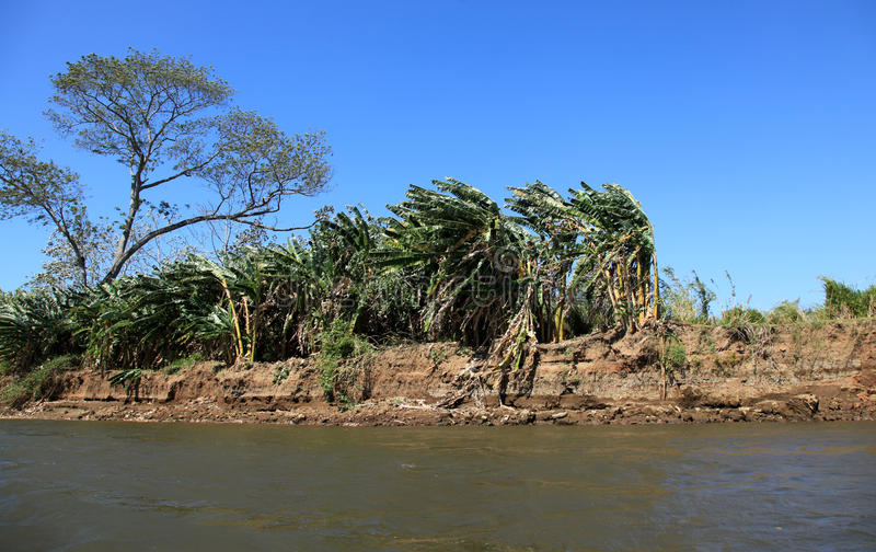 Paisagem ao longo do rio de Tarcoles imagem de stock