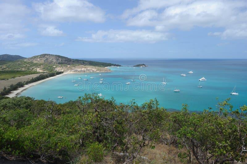 Paisagem australiana Ilha do lagarto, o grande recife de coral, Queensland, Austrália imagem de stock royalty free