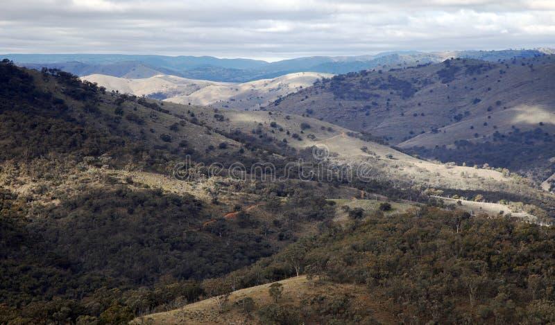 Paisagem azul da natureza das montanhas, Austrália fotos de stock royalty free