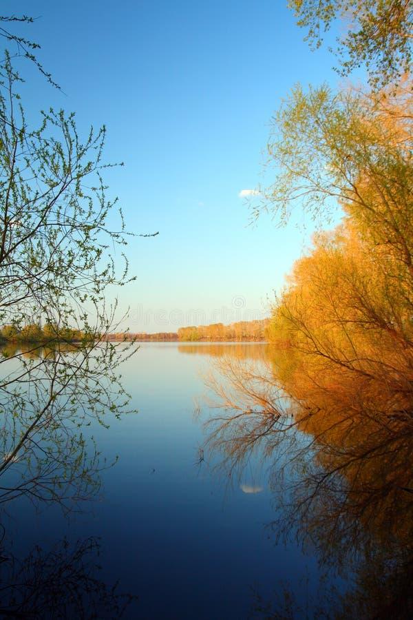 Paisagem azul e amarela do lago imagem de stock royalty free