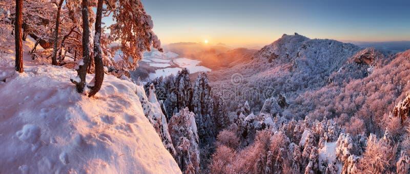Paisagem bonita com árvores cobertos de neve, Slo do panorama do inverno imagem de stock