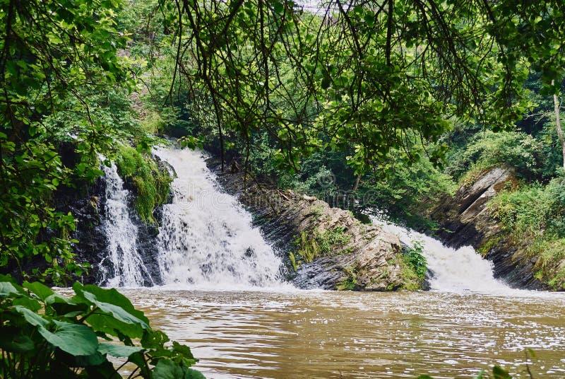 Paisagem bonita com cachoeira e floresta imagem de stock royalty free