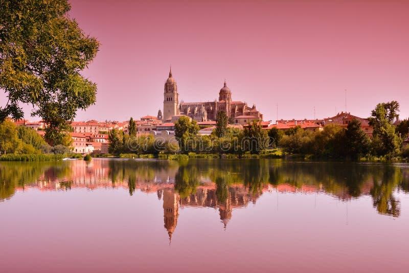 Paisagem bonita com a catedral famosa de Salamanca na Espanha fotos de stock royalty free