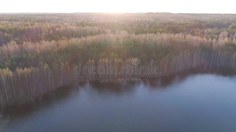 Paisagem bonita com floresta e lagoa no por do sol Luz solar bonita Foto da vista aérea imagem de stock royalty free