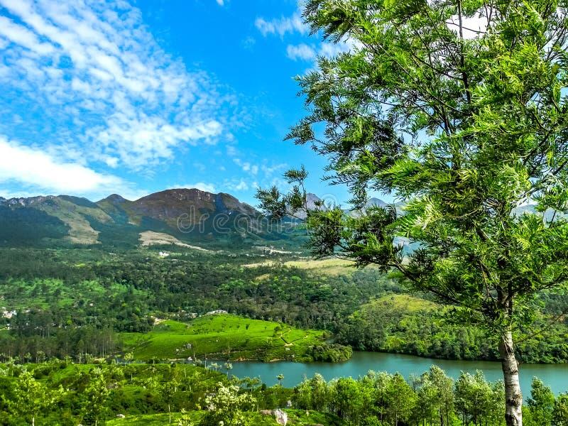 Paisagem bonita com floresta e o rio selvagens de Periyar, Kerala, Índia fotografia de stock royalty free