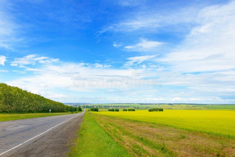 Paisagem bonita com grama verde, o céu azul e a estrada fotos de stock