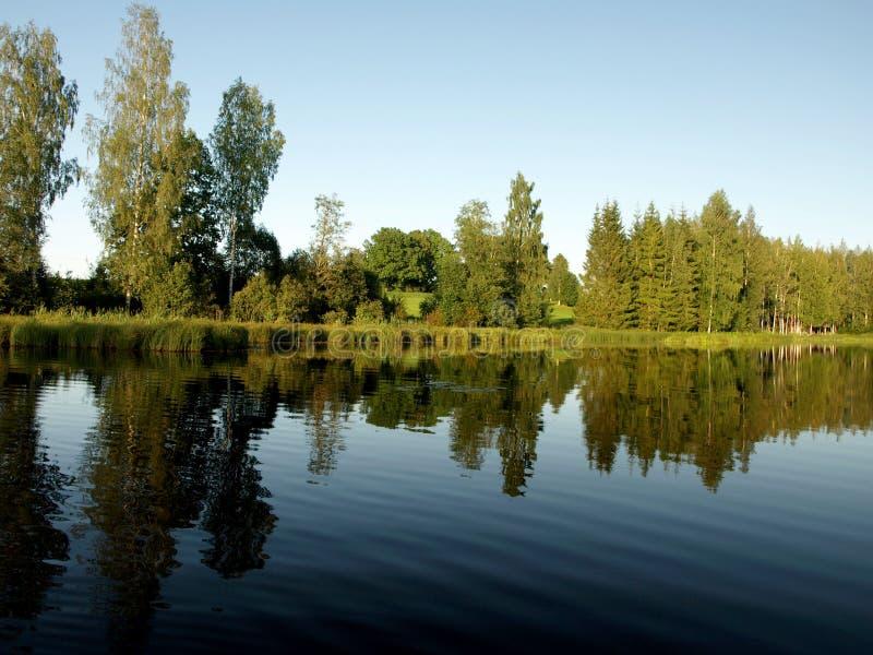 Paisagem bonita com lago calmo, reflexões do verão de árvores diferentes, fotos de stock