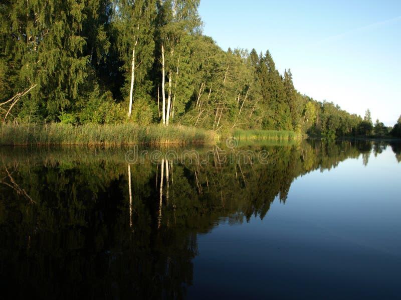Paisagem bonita com lago calmo, reflexões do verão de árvores diferentes, fotografia de stock