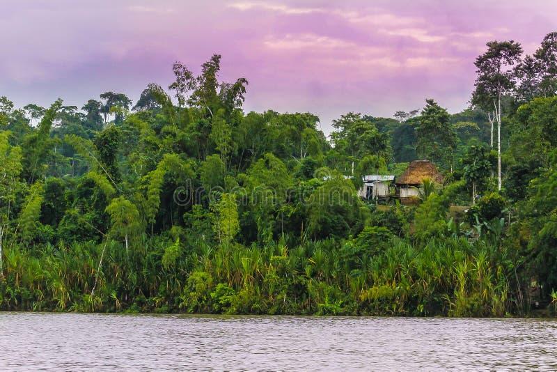 Paisagem bonita com rio, selva e cabanas sob o céu roxo fotos de stock royalty free