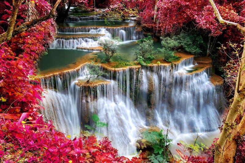 Paisagem bonita da cachoeira com quadro vermelho da folha foto de stock royalty free