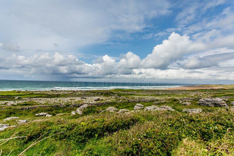 Paisagem bonita da costa com as rochas da pedra calcária com grama ao lado da praia de Fanore imagens de stock