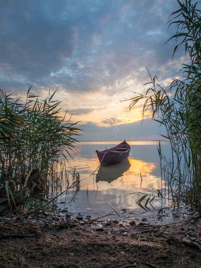 Paisagem bonita da manhã com um barco no lago no nascer do sol através do junco imagem de stock royalty free