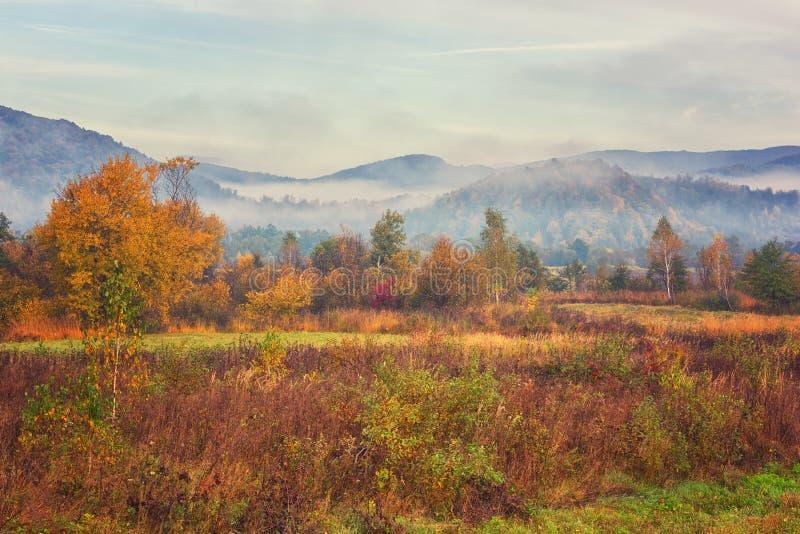 Paisagem bonita da montanha do outono, manhã nevoenta fotos de stock royalty free