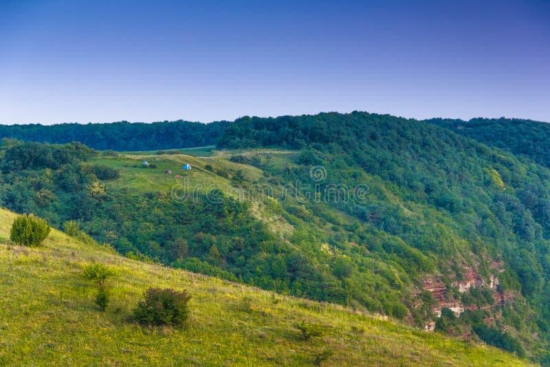 Paisagem bonita da montanha do verão Barracas do turista no prado perto da floresta imagens de stock